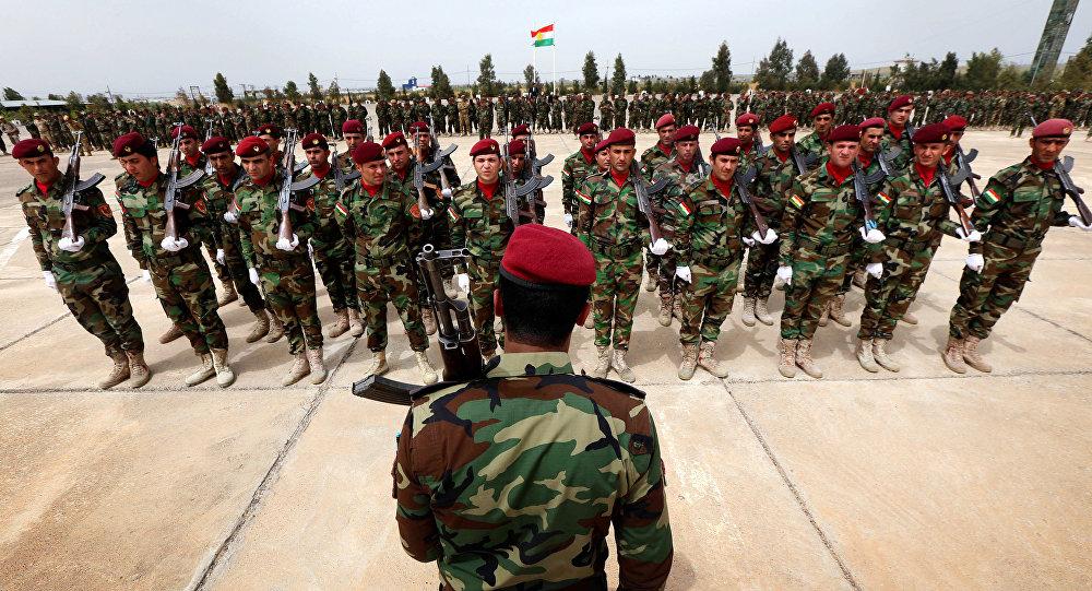 Irak'tan Peşmerge güçlerine yönelik tepki çeken açıklama
