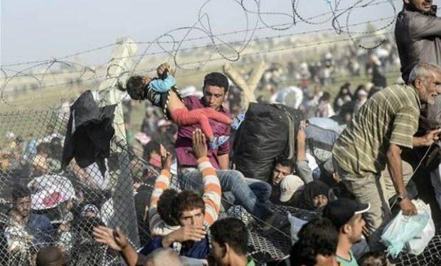 DSÖ: 46 milyon mülteci aşı programından yararlanamıyor