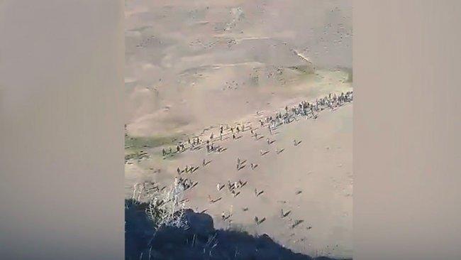 Türkiye'ye akın ediyorlar: Yüzlerce Afgan toplu halde sınırı geçti!